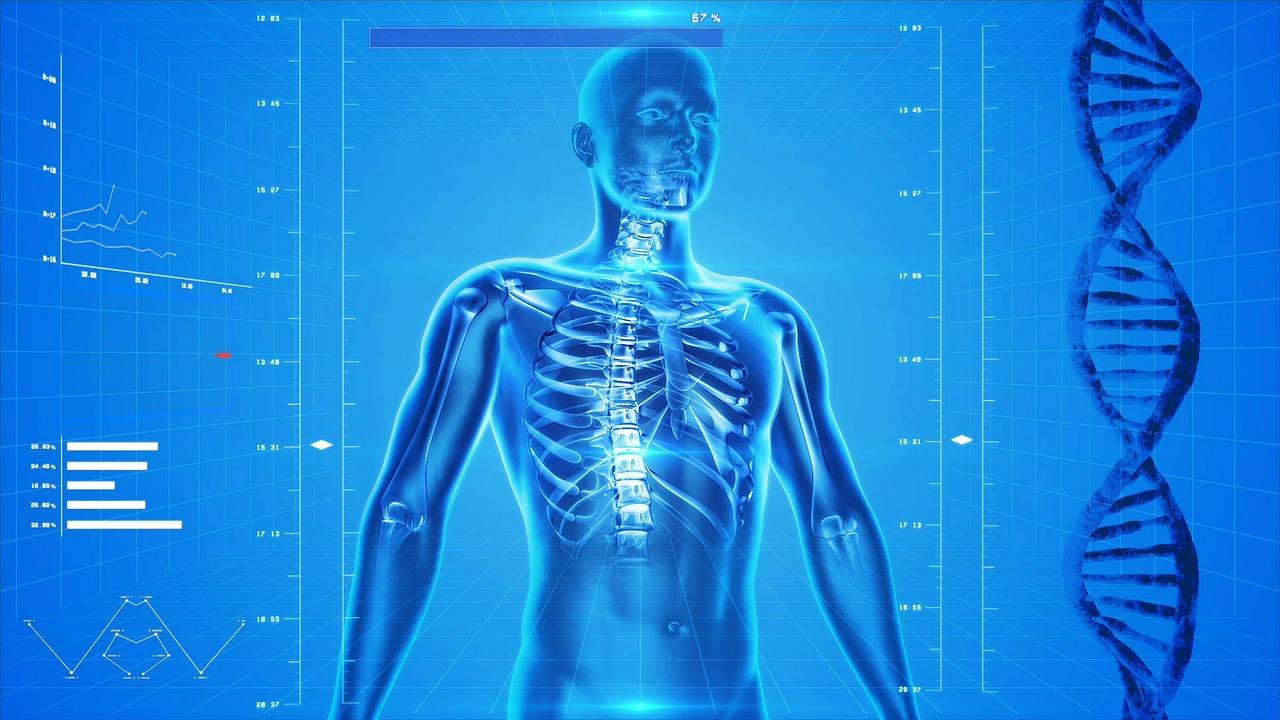 """Innovationsfonds fördert App """"Rise-uP"""" – E-Health gegen Rückenschmerzen"""