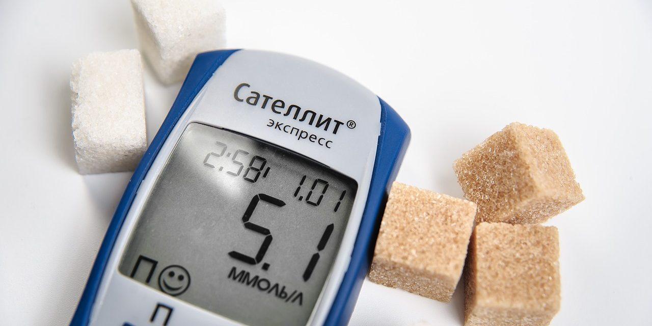 Digitale Diabetesversorgung: Telemedizin-Softwarelösung TeLiPro wird Teil der Landesinitiative eGesundheit.nrw