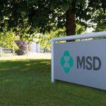 MSD Gesundheitspreis 2019: Jetzt bis zum 13. März 2019 bewerben!