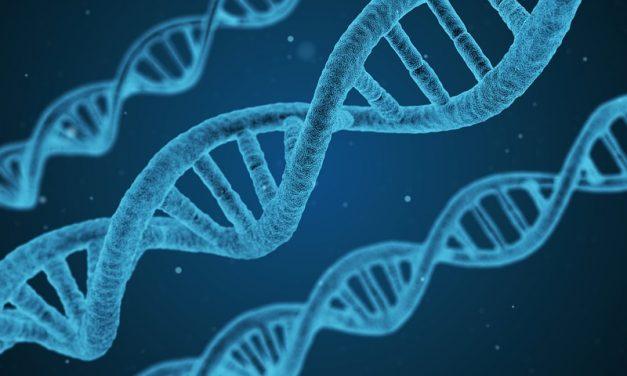 Daten für die Gesundheit- Münchener Start-up will klinische Forschung stärker vernetzen