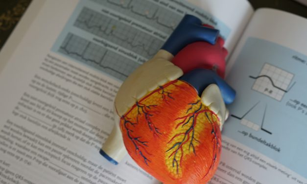 Herzinsuffizienz-Telemonitoring: PASSPORT-HF-Studie kann starten