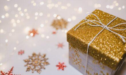 AppCheck wünscht frohe Weihnachten und einen guten Rutsch ins Jahr 2021!