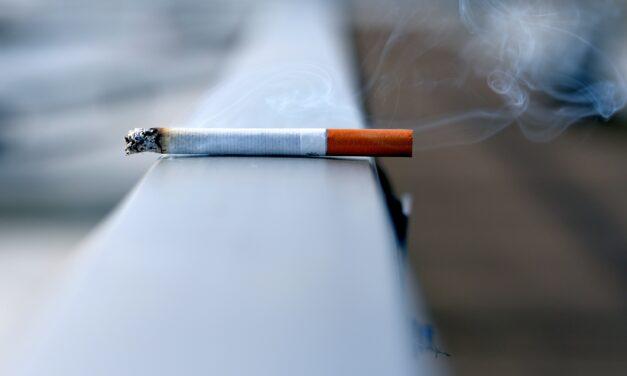 Rauchentwöhnung per App: Deutsche Atemwegsliga gibt PneumoDigital Prüfsiegel